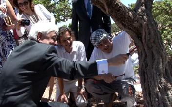 Ο Προκόπης Παυλόπουλος μάζεψε μαστίχα στη Χίο