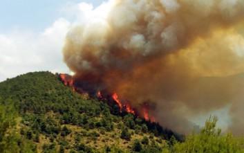 Πυρκαγιά σε δασική έκταση στην Ματαράγκα Αχαΐας