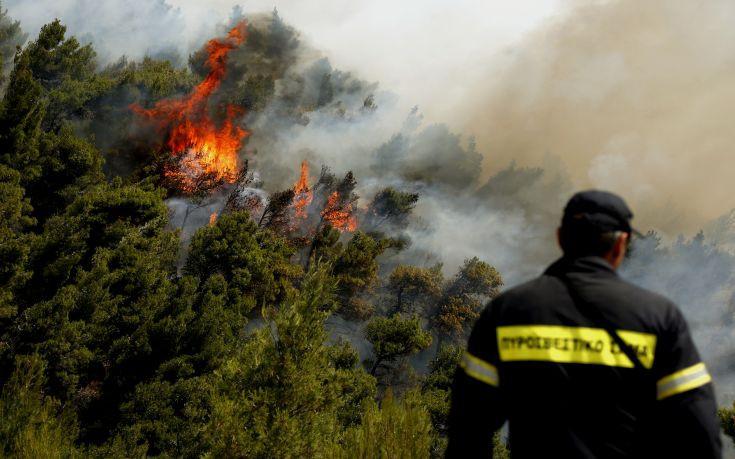 Φωτιά σε εξέλιξη στην Κατούνα Αιτωλοακαρνανίας
