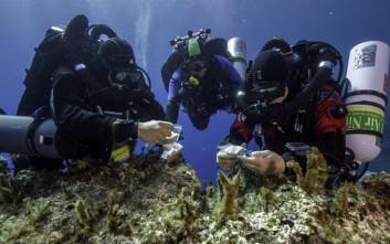 Ενδείξεις για δεύτερο πλοίο στο Ναυάγιο των Αντικυθήρων