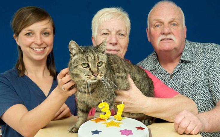 γηραιότερος γάτος γάτος