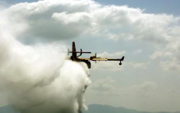 Πυρκαγιά σε χαμηλή βλάστηση στη λίμνη Μαραθώνα