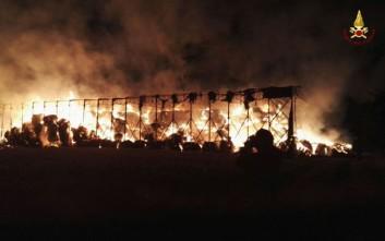 Δεκάδες πυρκαγιές ξέσπασαν στην περιφέρεια του Παλέρμο