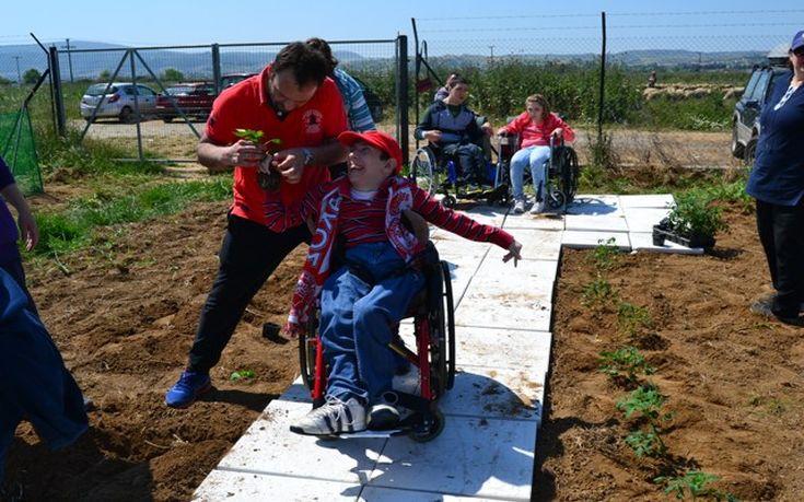 Παιδιά με αναπηρία φυτεύουν ντομάτες και μαρούλια στη Ραιδεστό