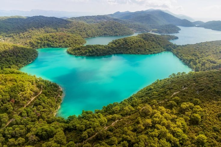 mljet-the-national-park-of-unseen-beauty-near-dubrovnik-aerial-helicopter-shoot-of-national-park-on-island-mljet-dubrovnik-archipelago-croatia-the-oldest-pine-forest-in-europe-preserved-643-d715