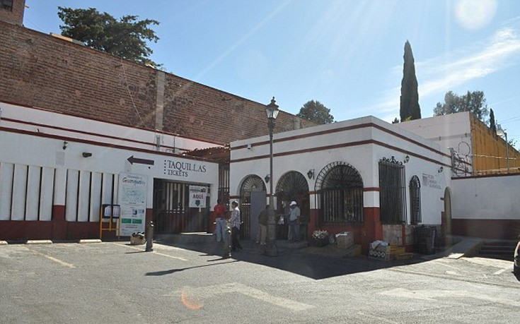 museomomia4