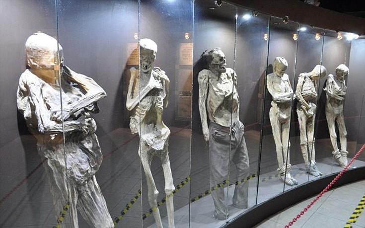 museomomia7