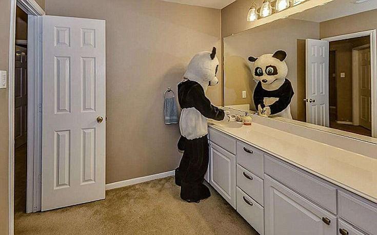 panda14