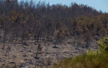 Την Πέμπτη η δίκη για την πυρκαγιά στη Σάμο