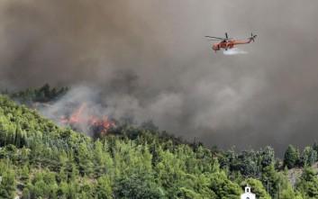 Υπό μερικό έλεγχο η δασική πυρκαγιά στο Κόκκινο Βοιωτίας