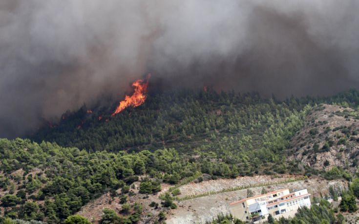 Σαράντα δύο δασικές πυρκαγιές σε όλη την Ελλάδα σε 24 ώρες