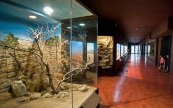 Αυξήθηκαν τον Αύγουστο οι επισκέπτες των μουσείων