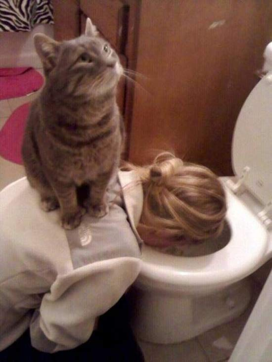 funny-fun-lol-drunk-girls-in-toilet-pics-images-photos-pictures-bajiroo-6