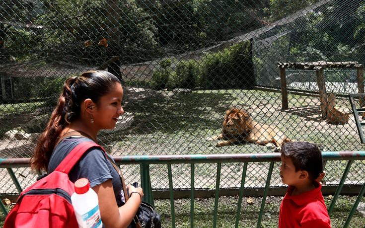 venezuela_zoo16