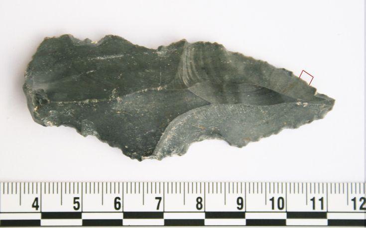 Ανακαλύφθηκαν τα αρχαιότερα στον κόσμο ζωικά ίχνη πάνω σε λίθινα εργαλεία