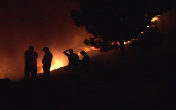 Σε εξέλιξη βρίσκεται η φωτιά στην Άνω Μέλπεια Μεσσηνίας
