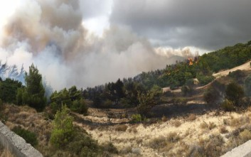 Φωτιά έκαψε αγροτοδασική έκταση στο Πεντάλοφο Μεσολογγίου