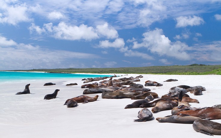 Trips-3-Galápagos