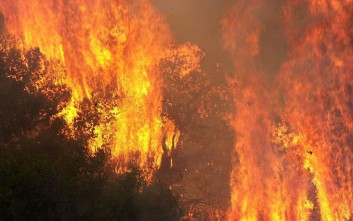 Σε εξέλιξη φωτιές σε χωριά της Δρόπολης και της Φοινίκης στην Αλβανία