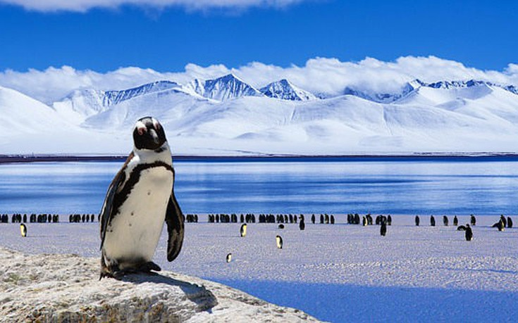 places-1-antarctica