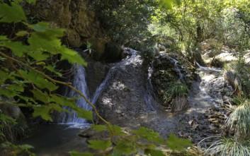 Απίστευτη η τραγωδία στο Πολυλίμνιο με νεκρή μια 24χρονη