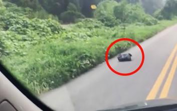 Βρήκε μια... κινούμενη σακούλα σκουπιδιών στο δρόμο και δεν πίστευε τι είχε μέσα