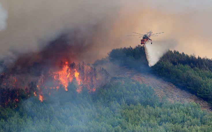 Φωτιά σε δασική έκταση στην περιοχή Γλυκορρίζι Μεσσηνίας
