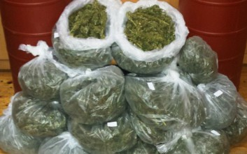 Αστυνομικοί στα Ιωάννινα βρήκαν... αδέσποτα 95 κιλά χασίς