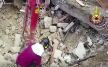 Γάτα ανασύρθηκε ζωντανή 15 μέρες μετά τον σεισμό στην Ιταλία