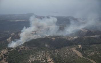Άμεσα μέτρα για την πυρόπληκτη Θάσο από το υπουργείο Περιβάλλοντος