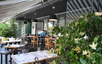 Πιπεριά, για θαλασσινούς μεζέδες και μεσογειακές γεύσεις στο Νέο Ψυχικό