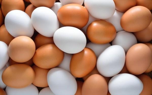 Γιατί μερικά αυγά είναι λευκά και μερικά καφέ