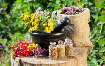 Πώς αξιοποιούνται επιχειρηματικά αρωματικά και φαρμακευτικά φυτά
