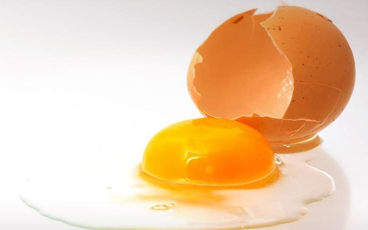 Οι Έλληνες αβγοπαραγωγοί δεν έχουν επιβεβαιωμένο κρούσμα μολυσμένου αβγού