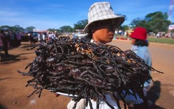 Η αηδιαστική... λιχουδιά της Καμπότζης