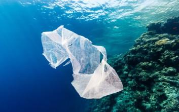Τέλος οι πλαστικές σακούλες στην περιφέρεια της Ερυθράς Θάλασσας