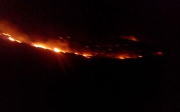 Ενισχύθηκαν οι πυροσβεστικές δυνάμεις στην Άνδρο