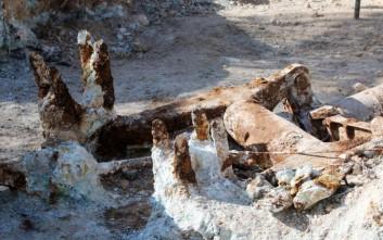 Επαναπατρίζονται τα οστά των πεσόντων του «Νοράτλας»