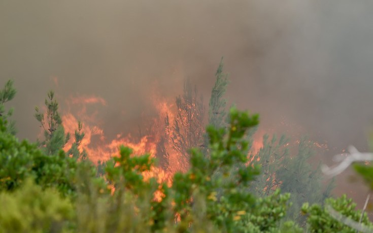 Υπό μερικό έλεγχο η φωτιά στον Αποκόρωνα στα Χανιά