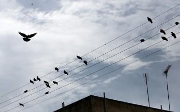 Κύκλωμα έπειθε πολίτες να κλέβουν ρεύμα, «πειράζοντας» τους μετρητές