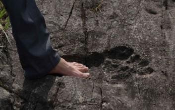 Ανακάλυψαν ένα από τα μεγαλύτερα αποτυπώματα δεινοσαύρου στον κόσμο