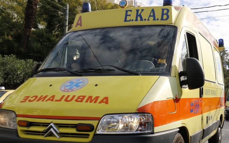 Σμέρνα δάγκωσε γυναίκα στην Ελούντα και κινδύνευσαν τα δάκτυλά της