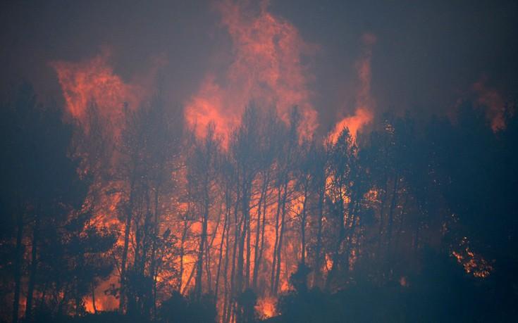 Στο έλεος της φωτιάς Πορτογαλία και Κορσική