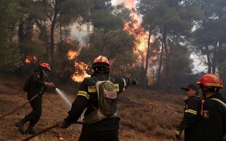 Μεγάλη πυρκαγιά ξύπνησε εφιαλτικές μνήμες στην Αρήνη Ζαχάρως