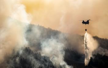 Πυρκαγιά στην περιοχή Μιλά Μεσσηνίας