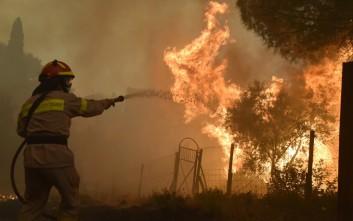 Νέα φωτιά στην ανατολική Μάνη, στην περιοχή Κοκκάλα