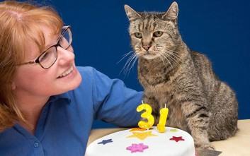 Ο γάτος «μαθουσάλας» που έκλεισε τα 31