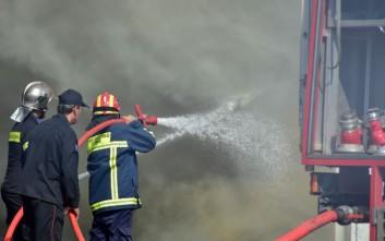 Σκύλος δάγκωσε πυροσβέστη την ώρα που έσβηνε φωτιά