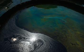 «Σφραγίστηκε» εργοστάσιο εξαιτίας ρύπανσης σε υπέδαφος και νερό