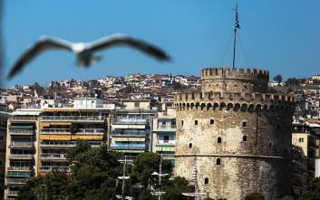 Ένα έντομο προσβάλλει τα δέντρα στο κέντρο της Θεσσαλονίκης